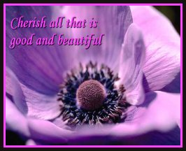 Cherish All Things Good and Beautiful